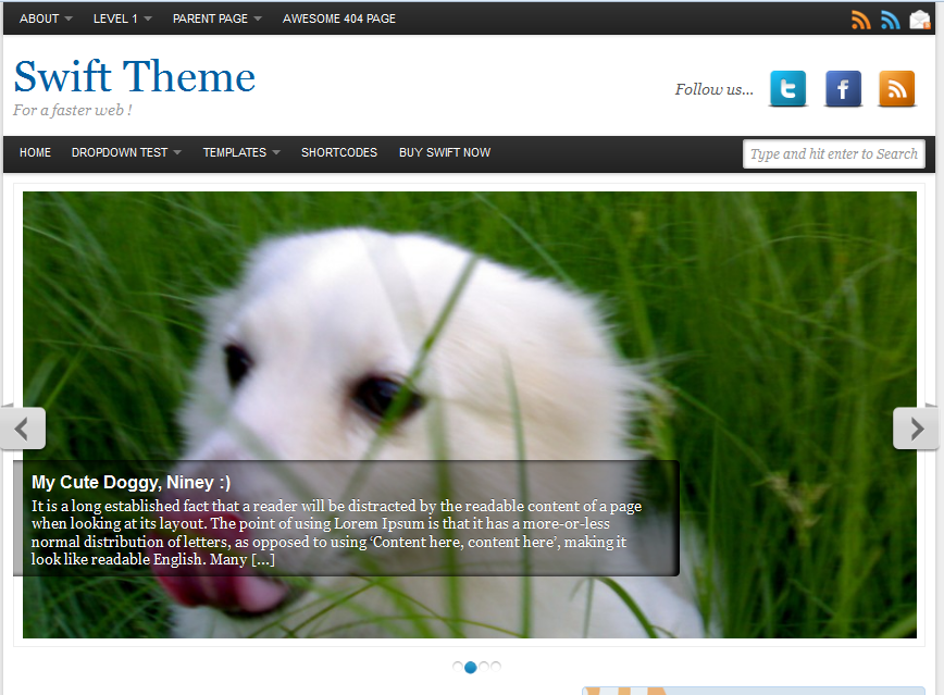 swift basic wordpress theme