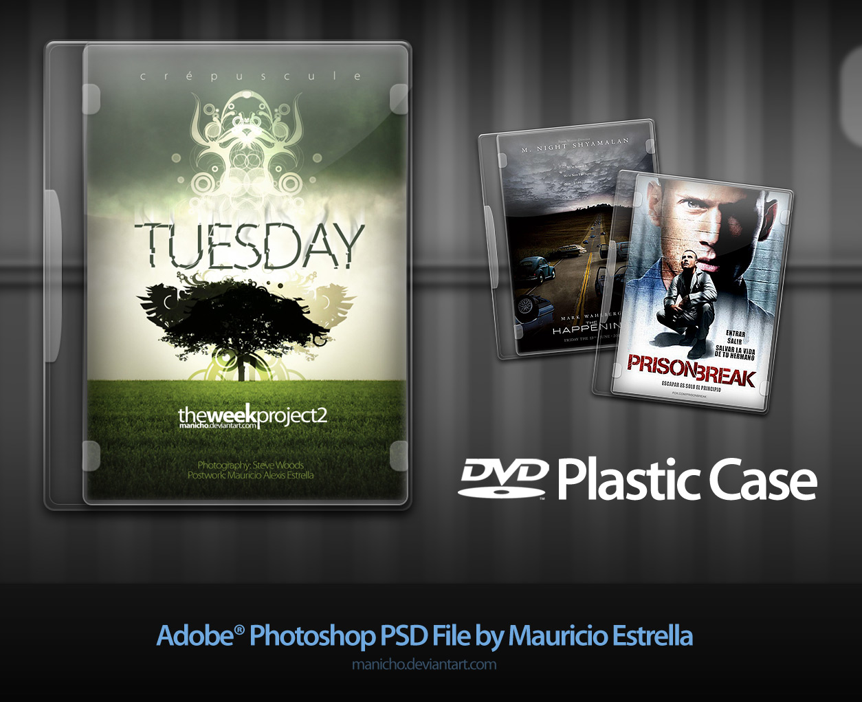 DVD Plastic Case PSD file by manicho