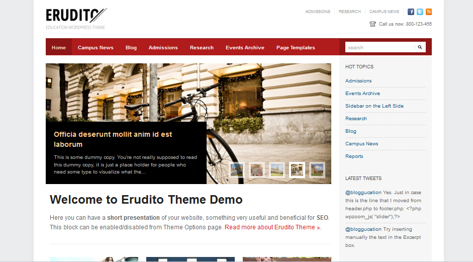 Erudito Elegent WordPress Theme